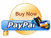 hacking paypal buy now button
