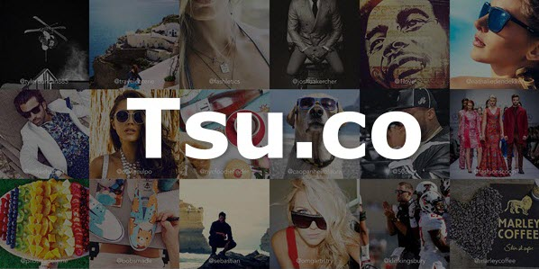 tsu.co - shortcode
