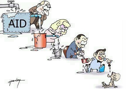 NGO reality in India